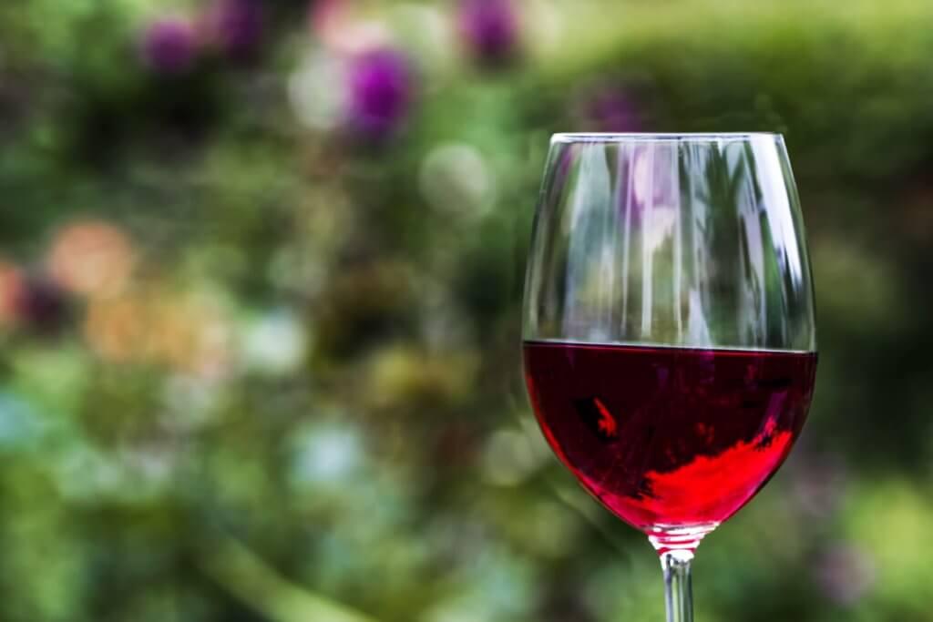 Vinho seco: Tudo o que você precisa saber sobre!