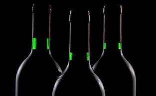 Vinhos especiais: conheça mais sobre eles