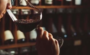 Roda de aromas dos vinhos: Como entender?