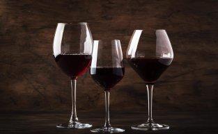 O que você precisa saber sobre os vinhos argentinos?